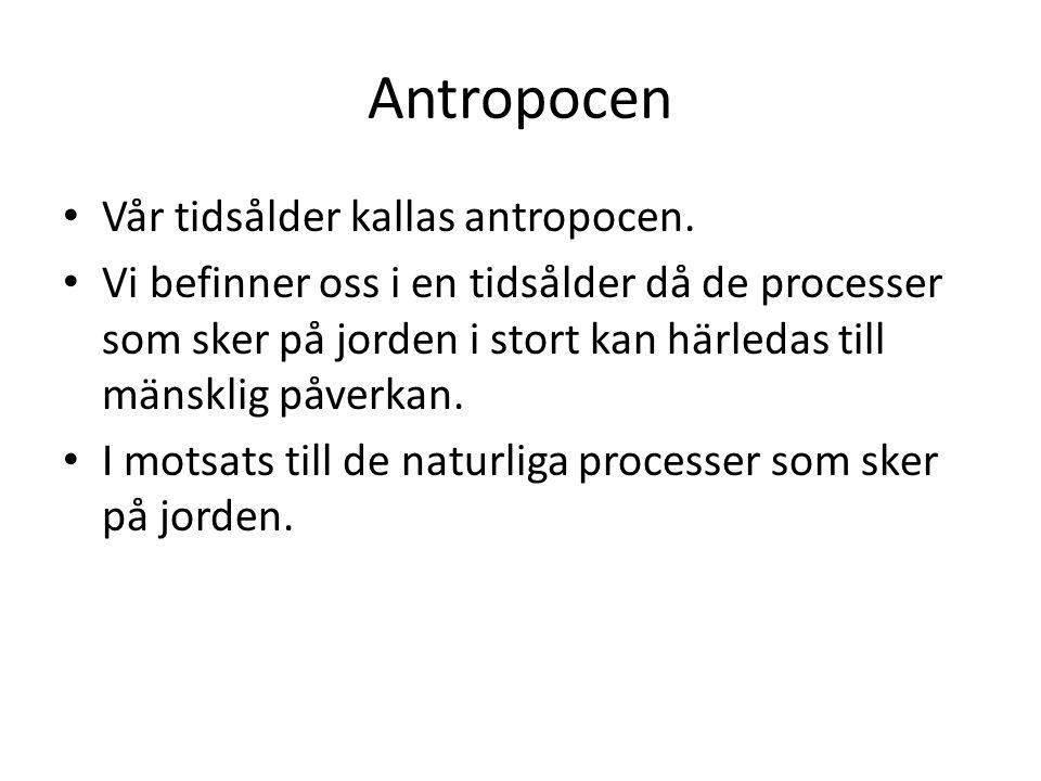 Antropocen Vår tidsålder kallas antropocen.