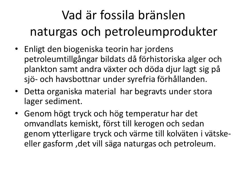 Vad är fossila bränslen naturgas och petroleumprodukter Enligt den biogeniska teorin har jordens petroleumtillgångar bildats då förhistoriska alger och plankton samt andra växter och döda djur lagt sig på sjö- och havsbottnar under syrefria förhållanden.