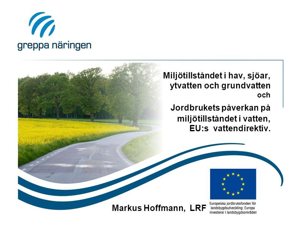 Miljötillståndet i hav, sjöar, ytvatten och grundvatten och Jordbrukets påverkan på miljötillståndet i vatten, EU:s vattendirektiv. Markus Hoffmann, L