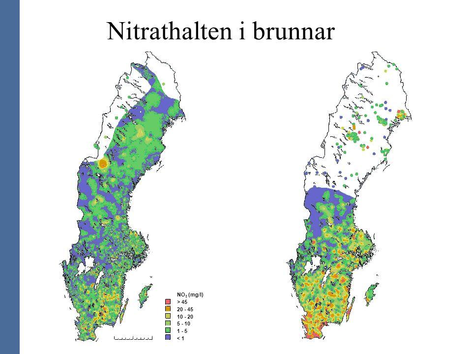 Nitrathalten i brunnar NO 3 (mg/l) > 45 20 - 45 10 - 20 5 - 10 1 - 5 < 1