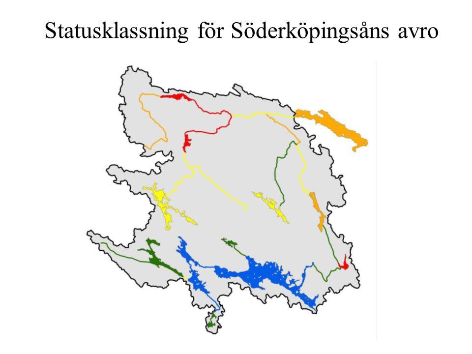 Statusklassning för Söderköpingsåns avro