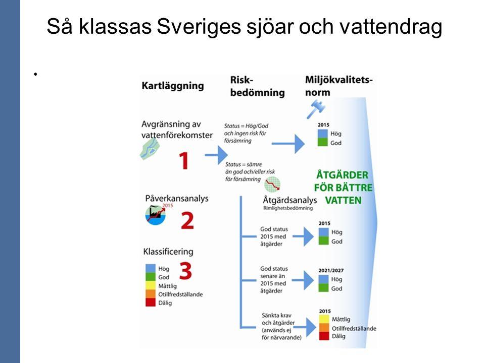Så klassas Sveriges sjöar och vattendrag
