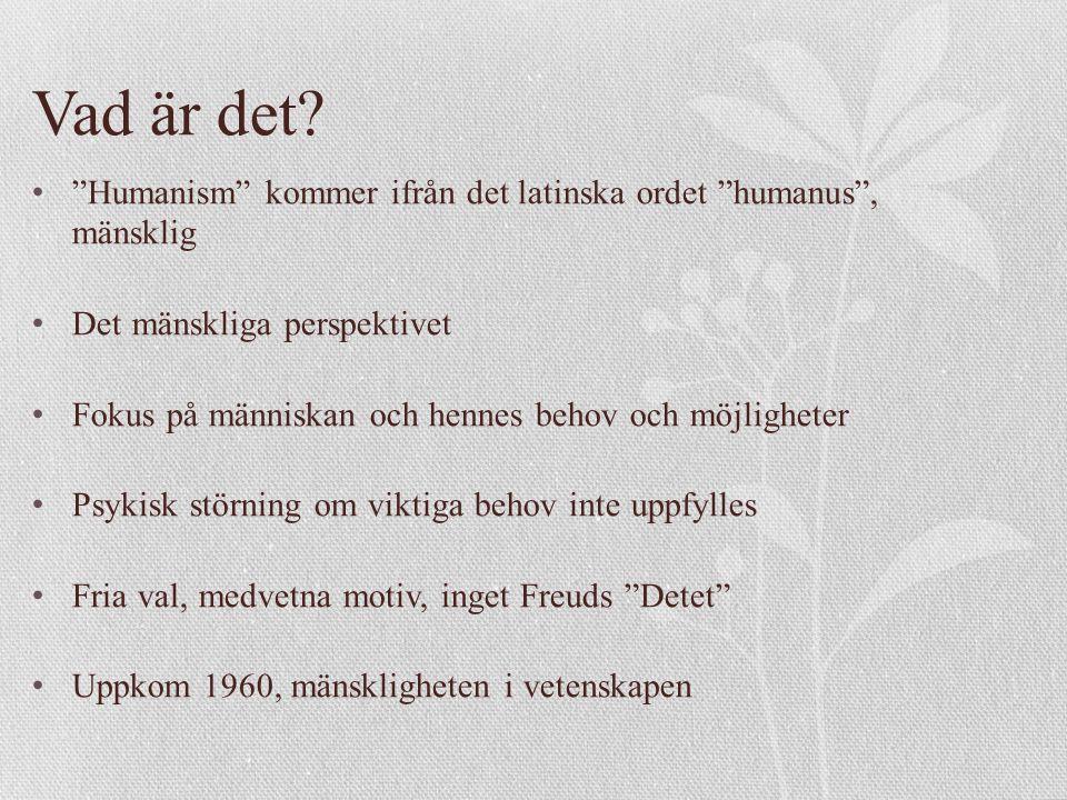 Förklaringsmodeller Maslows behovstrappa Jungs analytiska psykologi Rogers teori (självet, villkorlig kärlek, klientcentrerad terapi)