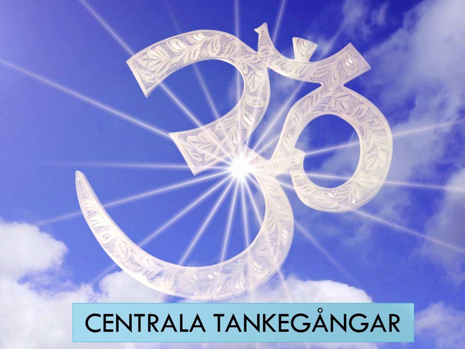POLYTEISTISK RELIGION Brahman, den andliga kraften, finns överallt och i allting.
