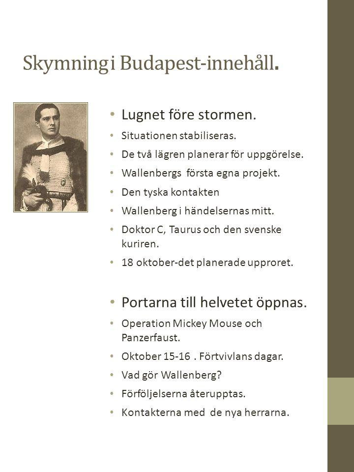 Skymning över Budapest- innehåll.Schutzling protokoll-gruppen Dödsmarscherna.