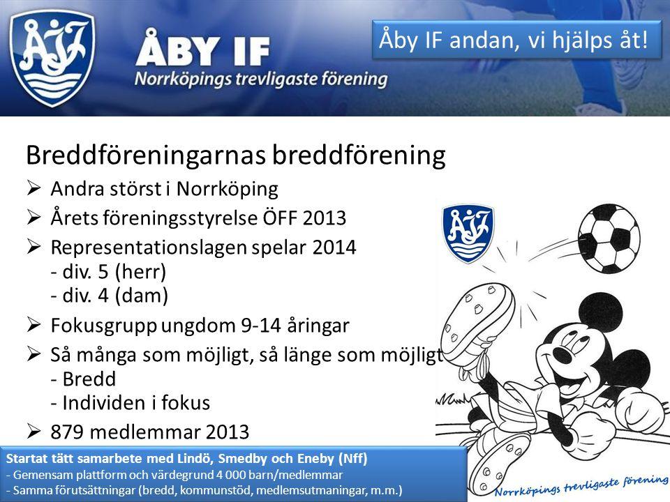 Breddföreningarnas breddförening  Andra störst i Norrköping  Årets föreningsstyrelse ÖFF 2013  Representationslagen spelar 2014 - div. 5 (herr) - d