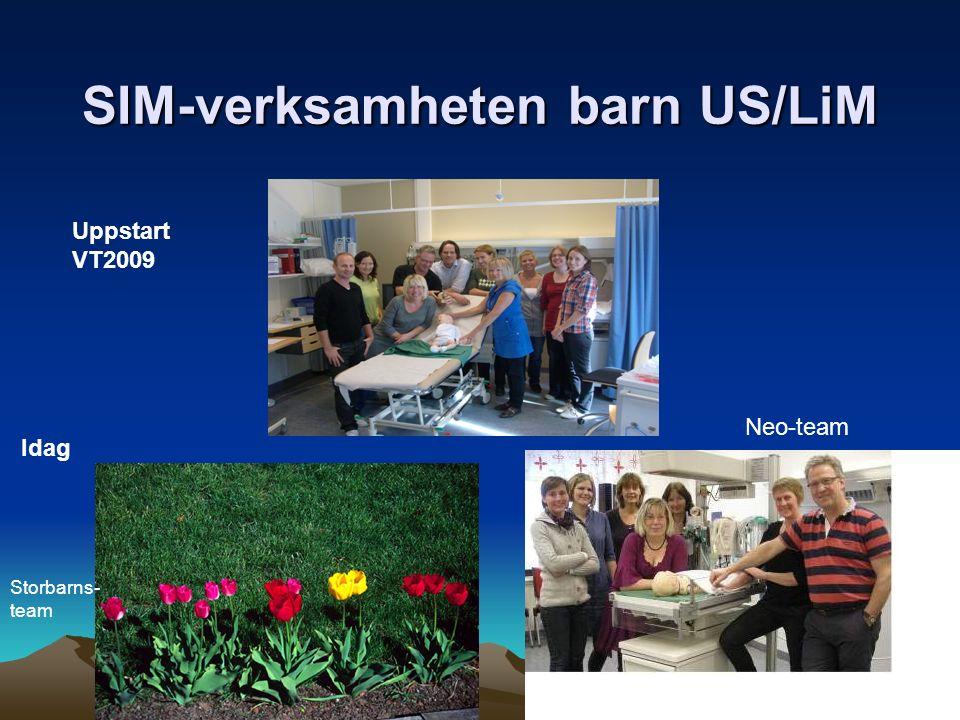 SIM-verksamheten barn US/LiM Uppstart VT2009 Idag Storbarns- team Neo-team