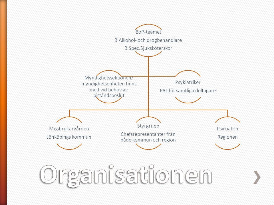 BoP-teamet 3 Alkohol- och drogbehandlare 3 Spec.Sjuksköterskor Missbrukarvården Jönköpings kommun Styrgrupp Chefsrepresentanter från både kommun och region Psykiatrin Regionen Myndighetssektionen/ myndighetsenheten finns med vid behov av biståndsbeslut Psykiatriker PAL för samtliga deltagare