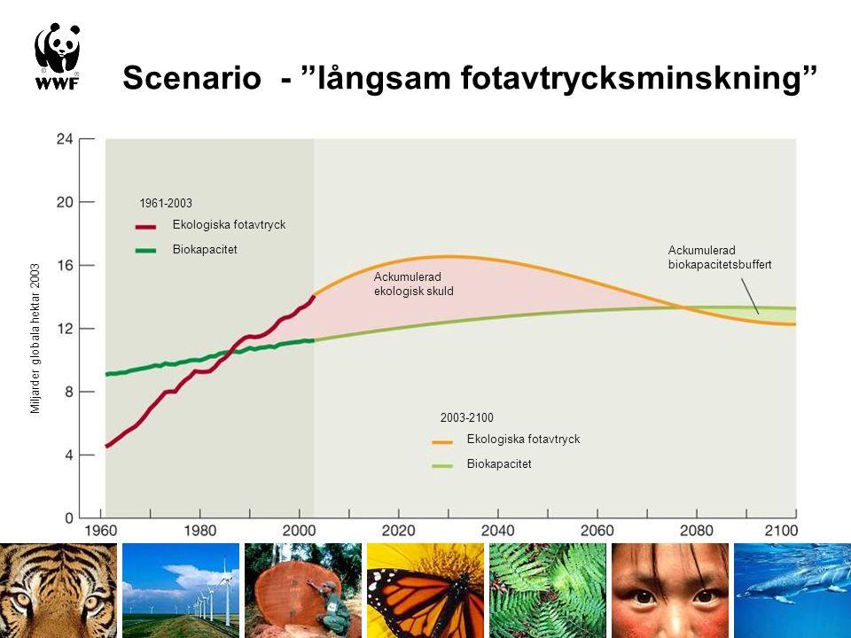 Scenario - långsam fotavtrycksminskning Ekologiska fotavtryck Biokapacitet Ekologiska fotavtryck Biokapacitet Ackumulerad ekologisk skuld Ackumulerad biokapacitetsbuffert 1961-2003 2003-2100 Miljarder globala hektar 2003