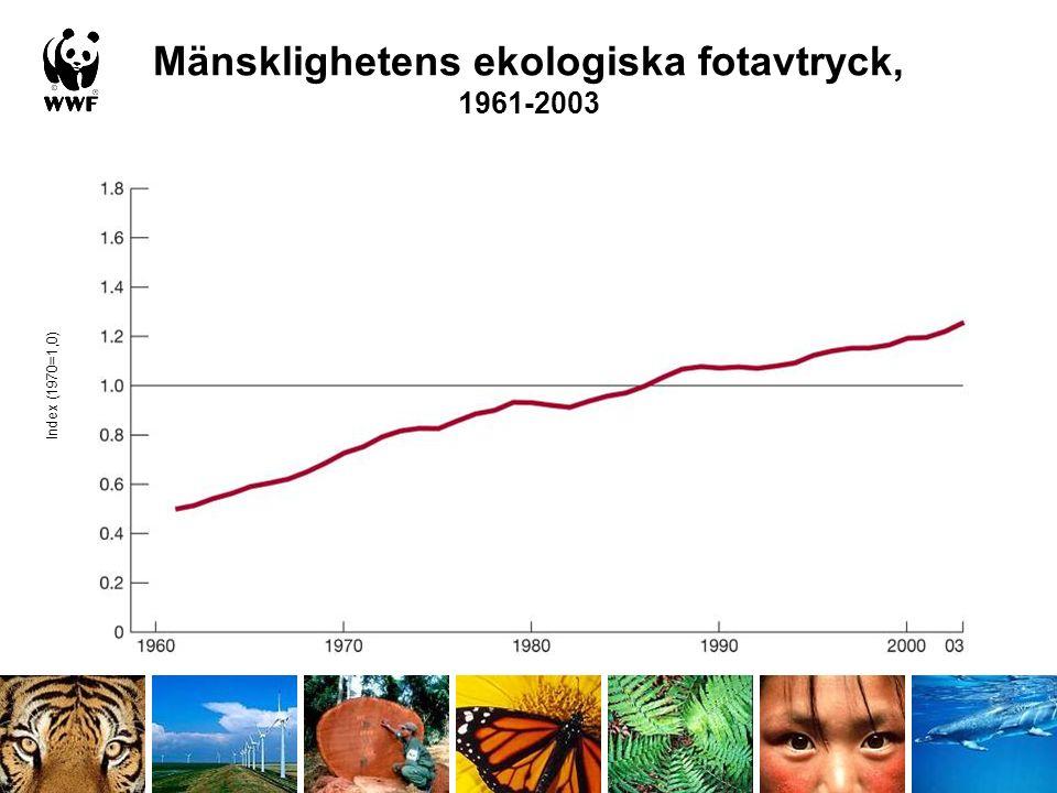 Ekologiska fotavtryck per person och land, 2003 Förenade Arab Emiraten USA Finland Sverige Norge Danmark Bebygd yta Kärnkraft CO 2 från fossila bränslen Fiskevatten Skog Betesmark Odlad mark Globala hektar per person, 2003