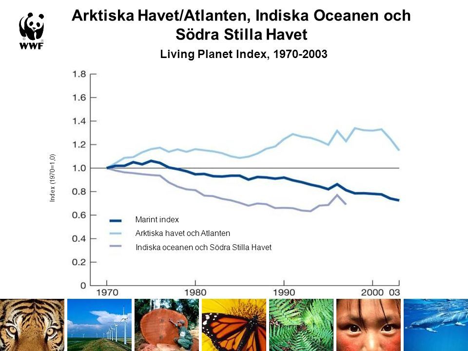 Indiska Oceanen/Sydvästra Stilla Havet och Stilla Havet Living Planet Index, 1970-2003 Marint index Stilla Havet Indiska Oceanen och Sydvästra Stilla Havet Index (1970=1,0)