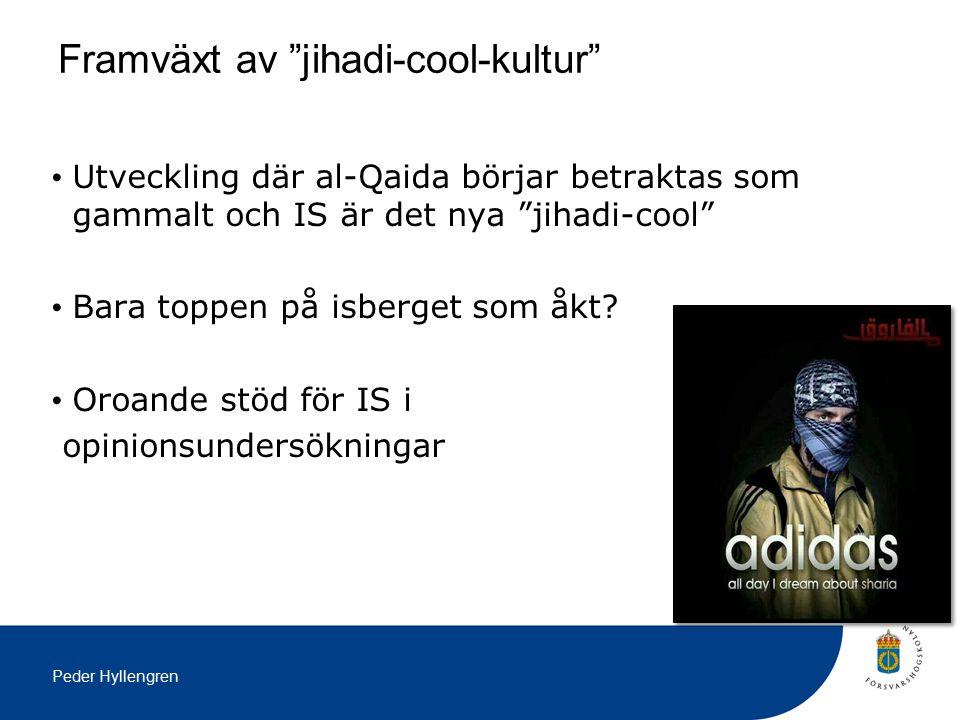 Peder Hyllengren Utveckling där al-Qaida börjar betraktas som gammalt och IS är det nya jihadi-cool Bara toppen på isberget som åkt.