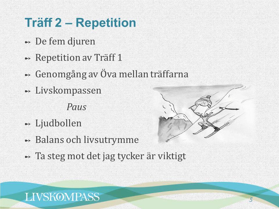 5 Träff 2 – Repetition ➻ De fem djuren ➻ Repetition av Träff 1 ➻ Genomgång av Öva mellan träffarna ➻ Livskompassen Paus ➻ Ljudbollen ➻ Balans och livs