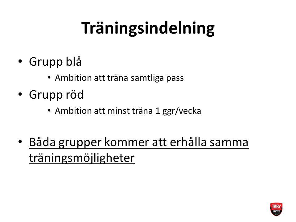 Träningsindelning Grupp blå Ambition att träna samtliga pass Grupp röd Ambition att minst träna 1 ggr/vecka Båda grupper kommer att erhålla samma träningsmöjligheter