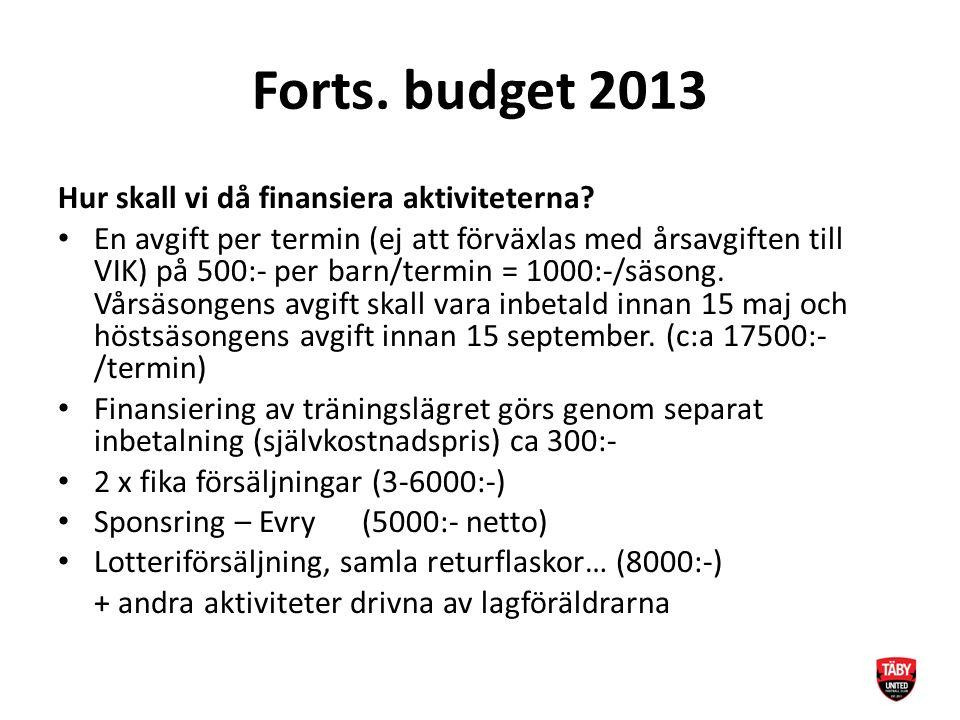 Forts. budget 2013 Hur skall vi då finansiera aktiviteterna.