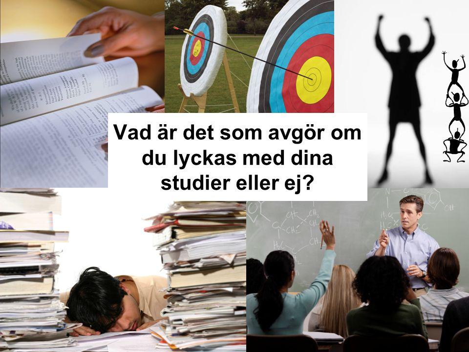 Vad är det som avgör om du lyckas med dina studier eller ej