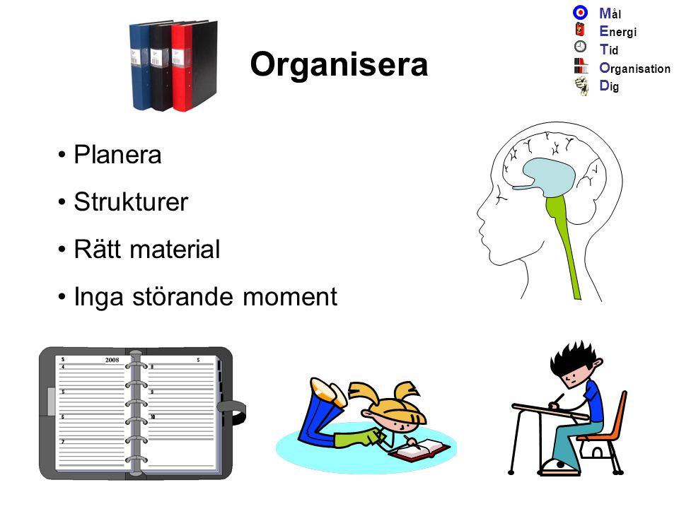 Organisera Planera Strukturer Rätt material Inga störande moment M ål E nergi T id O rganisation D ig