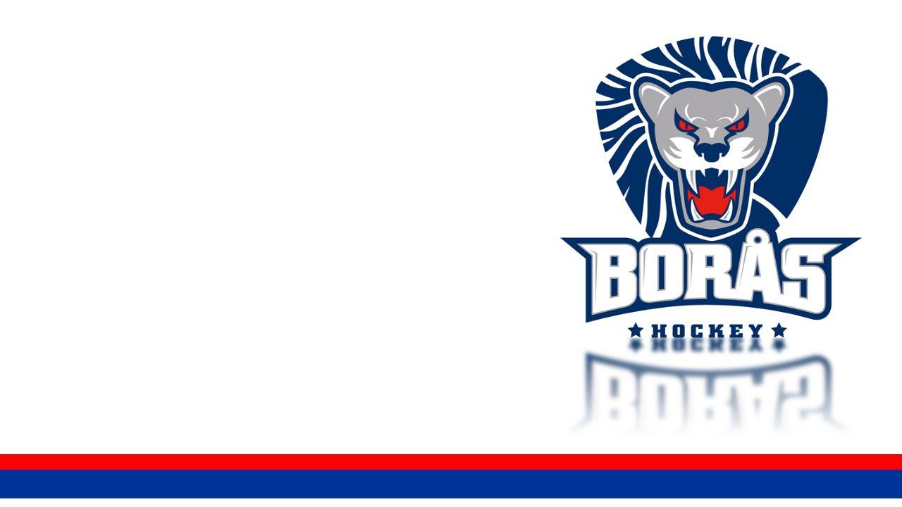 borashockey.se