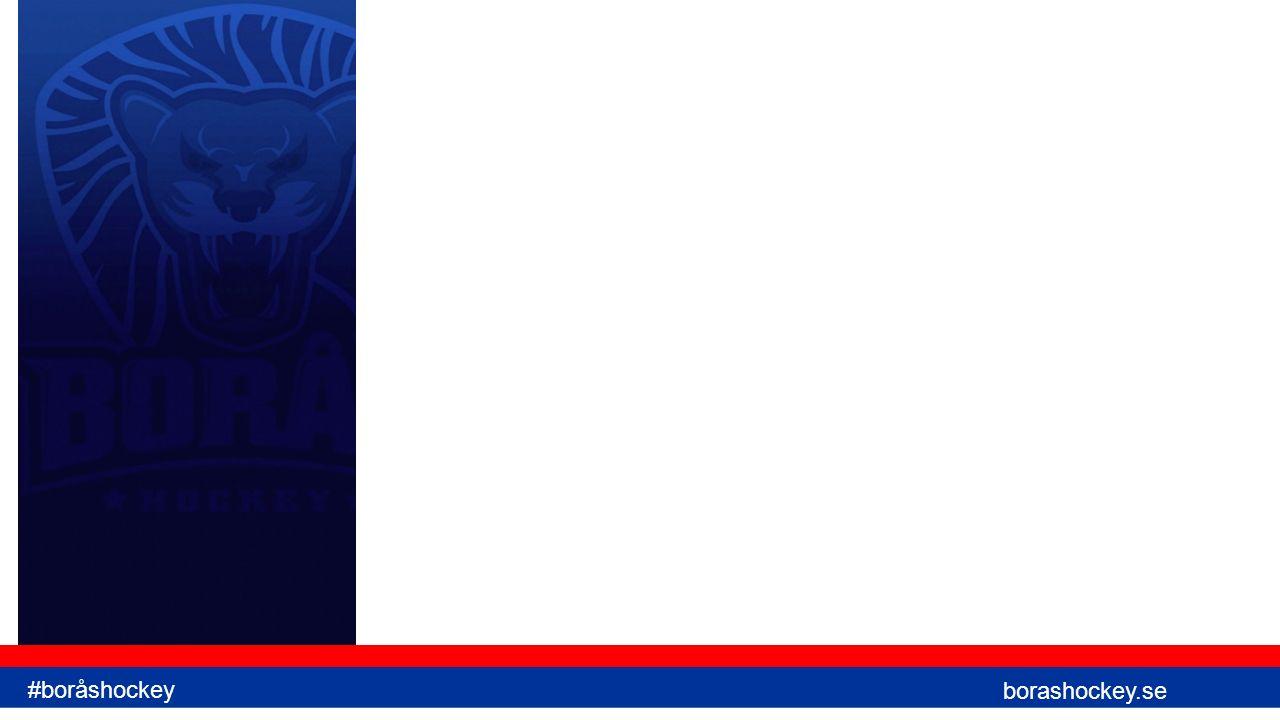 Spelidé - Positionsspecifikt Meta-språk – Målvakt, Back, Forward #boråshockey borashockey.se