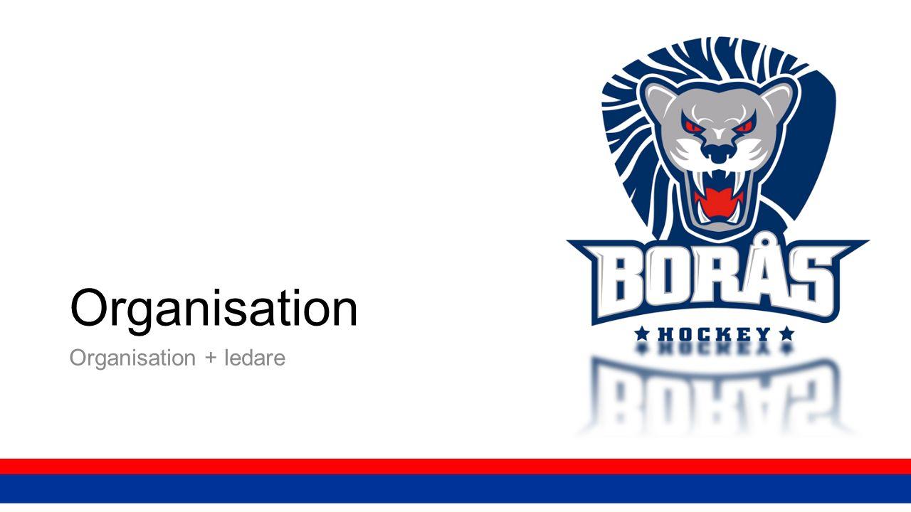 Organisation Organisation + ledare