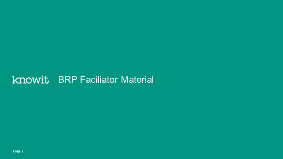 BRP Faciliator Material PAGE 1