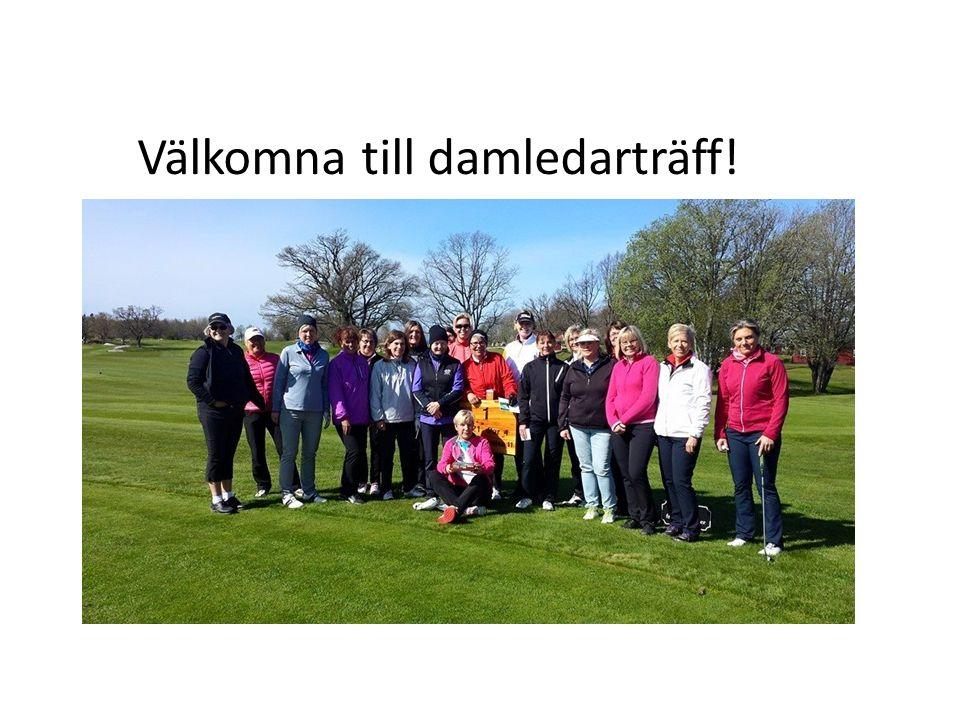 Smålands Golfförbund Smålands Golfförbund Damkommittén Annika Persson ordf.