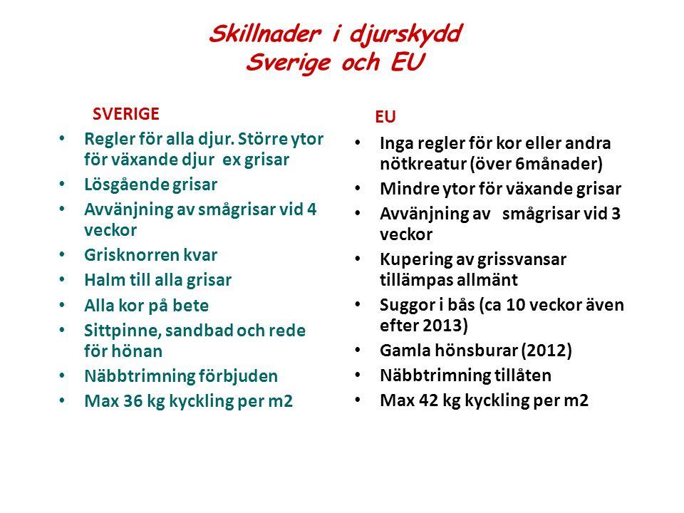 Skillnader i djurskydd Sverige och EU SVERIGE Regler för alla djur.