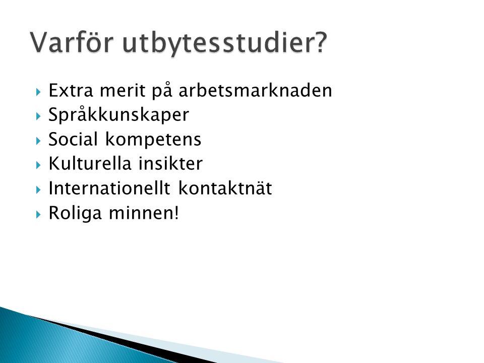  Extra merit på arbetsmarknaden  Språkkunskaper  Social kompetens  Kulturella insikter  Internationellt kontaktnät  Roliga minnen!