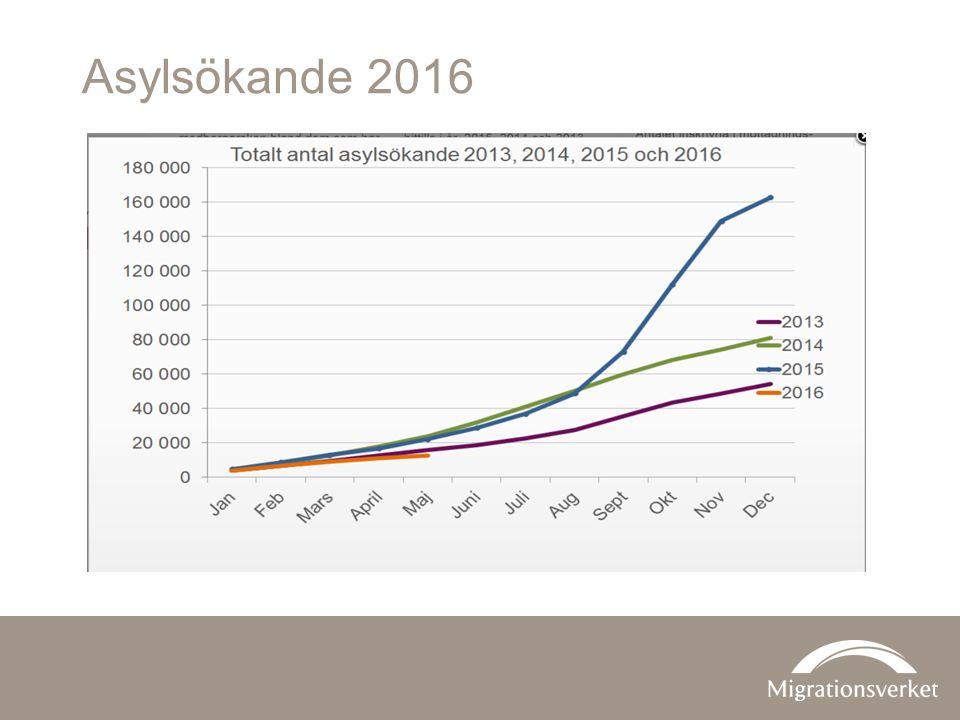 Asylsökande 2016