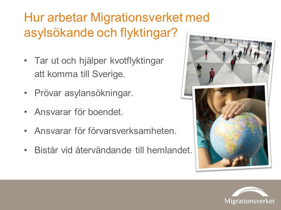 Hur arbetar Migrationsverket med asylsökande och flyktingar.