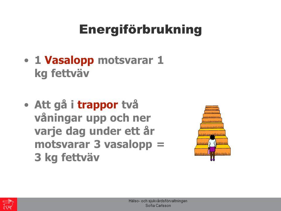 Hälso- och sjukvårdsförvaltningen Sofia Carlsson Energiförbrukning 1 Vasalopp motsvarar 1 kg fettväv Att gå i trappor två våningar upp och ner varje dag under ett år motsvarar 3 vasalopp = 3 kg fettväv