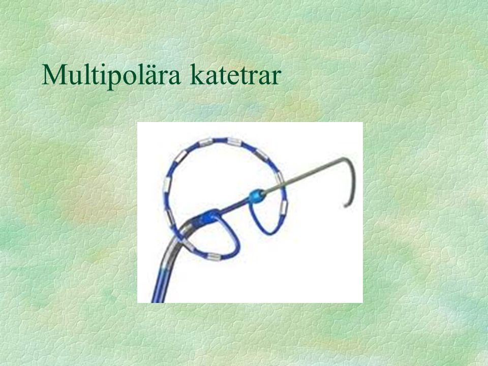 Multipolära katetrar
