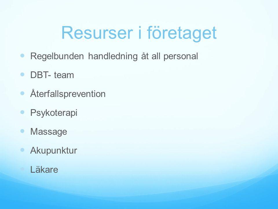 Resurser i företaget Regelbunden handledning åt all personal DBT- team Återfallsprevention Psykoterapi Massage Akupunktur Läkare