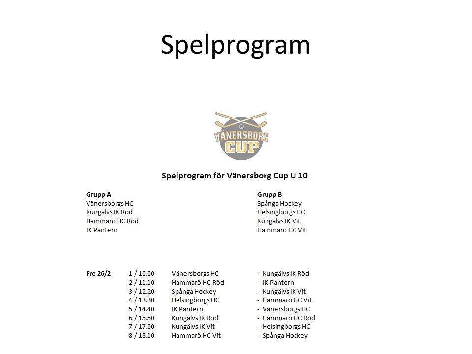 Spelprogram
