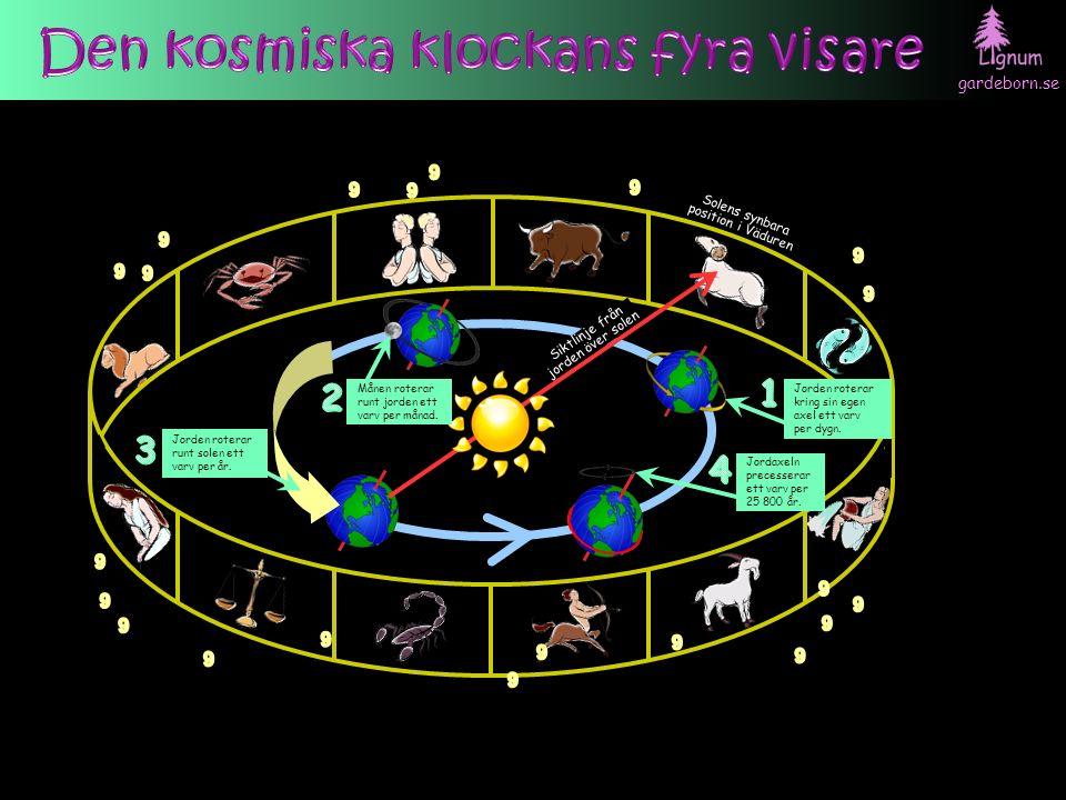 gardeborn.se Solens synbara position i Väduren Jorden roterar runt solen ett varv per år.