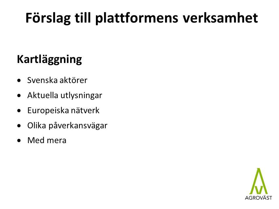 Förslag till plattformens verksamhet Kartläggning  Svenska aktörer  Aktuella utlysningar  Europeiska nätverk  Olika påverkansvägar  Med mera
