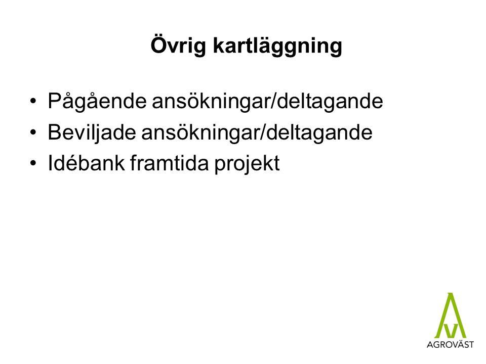 Övrig kartläggning Pågående ansökningar/deltagande Beviljade ansökningar/deltagande Idébank framtida projekt