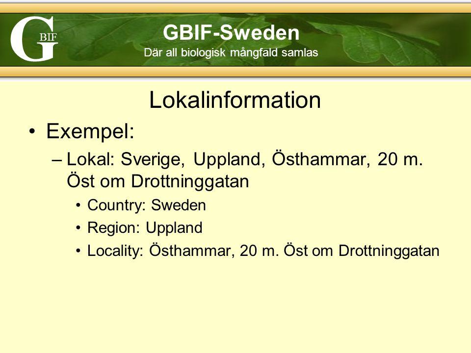 G BIF GBIF-Sweden Där all biologisk mångfald samlas Lokalinformation Exempel: –Lokal: Sverige, Uppland, Östhammar, 20 m.