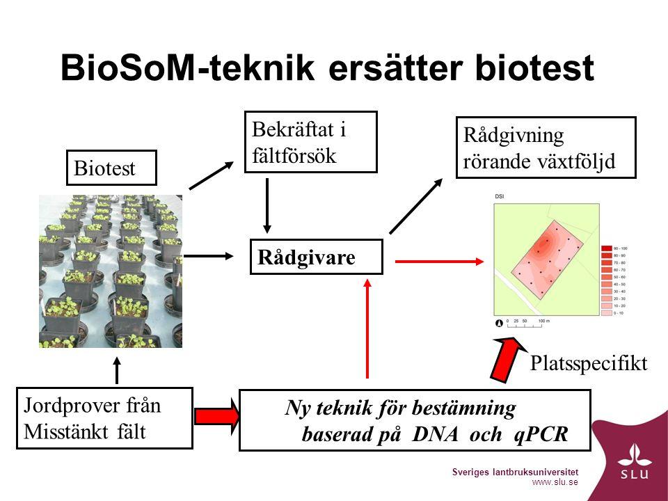 Sveriges lantbruksuniversitet www.slu.se BioSoM-teknik ersätter biotest Ny teknik för bestämning baserad på DNA och qPCR Bekräftat i fältförsök Rådgivning rörande växtföljd Jordprover från Misstänkt fält Biotest Rådgivare Platsspecifikt