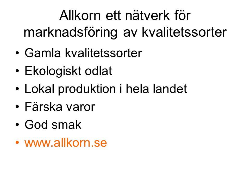 Allkorn ett nätverk för marknadsföring av kvalitetssorter Gamla kvalitetssorter Ekologiskt odlat Lokal produktion i hela landet Färska varor God smak www.allkorn.se