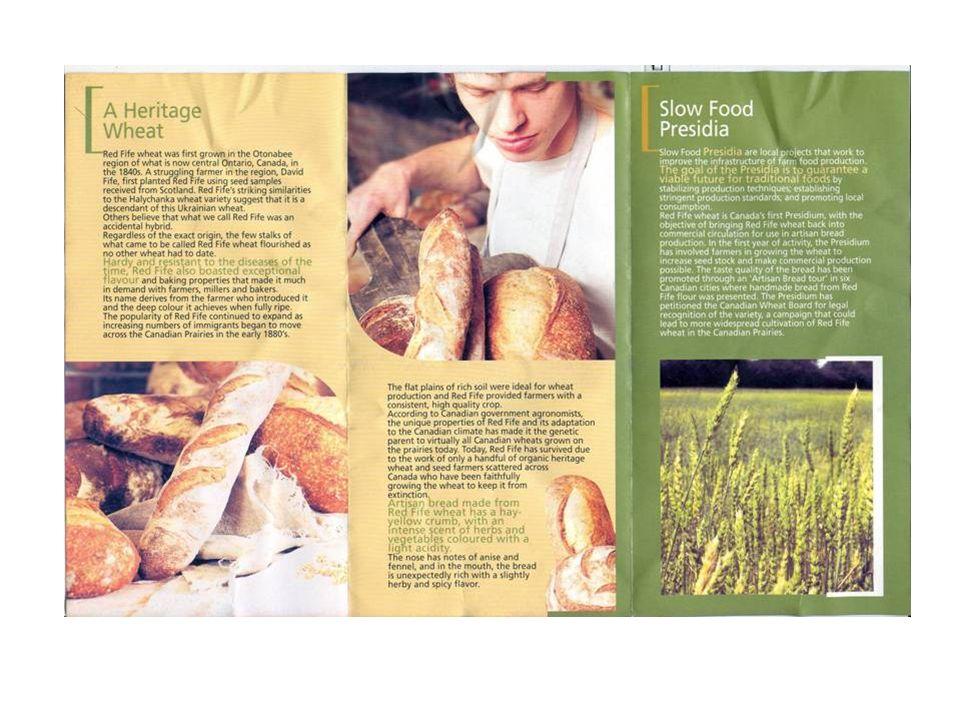 Svedjebruk Finnkulturen förvandlar med svedjebrukets hjälp i första hand barrskogsmark till åker.
