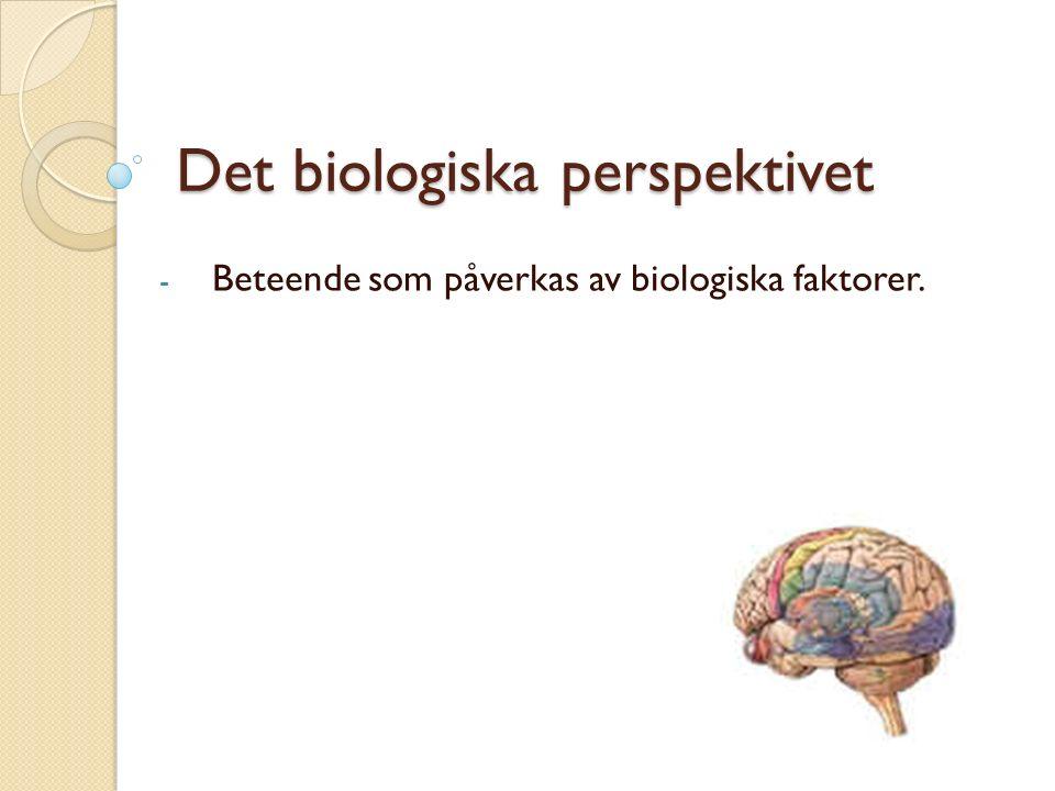 Det biologiska perspektivet - Beteende som påverkas av biologiska faktorer.
