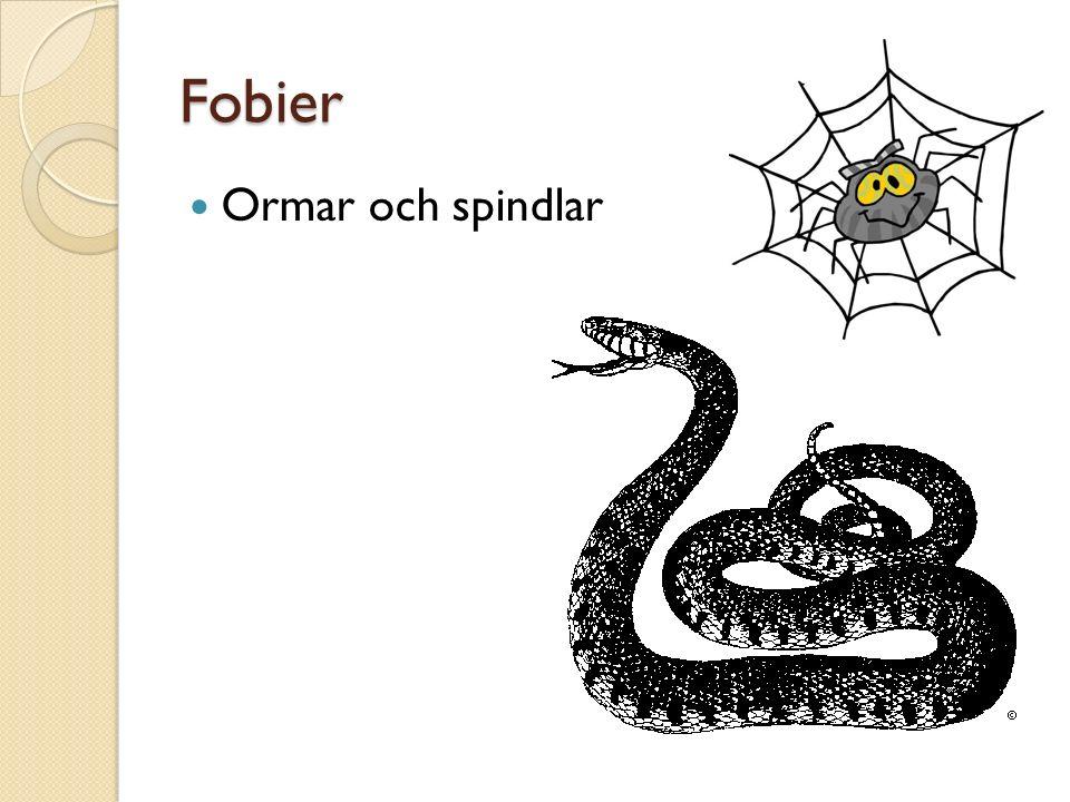 Fobier Ormar och spindlar