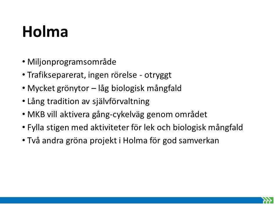 Holma Aktiviteter/åtgärder inom BiodiverCity i Holma Mångfaldstorn Pargunga med växter och fjärilsrabatt Raingarden med lek över stock och sten Ruderatmark Mångfaldskoja Insatser förskolegårdar Mångfaldsevent för boende Skyltprogram