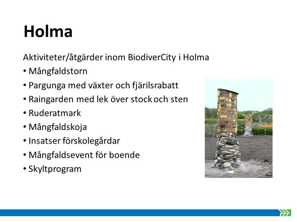Holma Aktiviteter/åtgärder inom BiodiverCity i Holma Mångfaldstorn Pargunga med växter och fjärilsrabatt Raingarden med lek över stock och sten Rudera