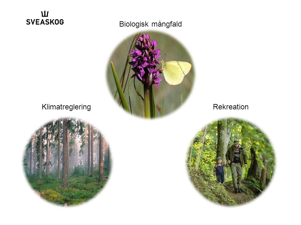 Biologisk mångfald KlimatregleringRekreation
