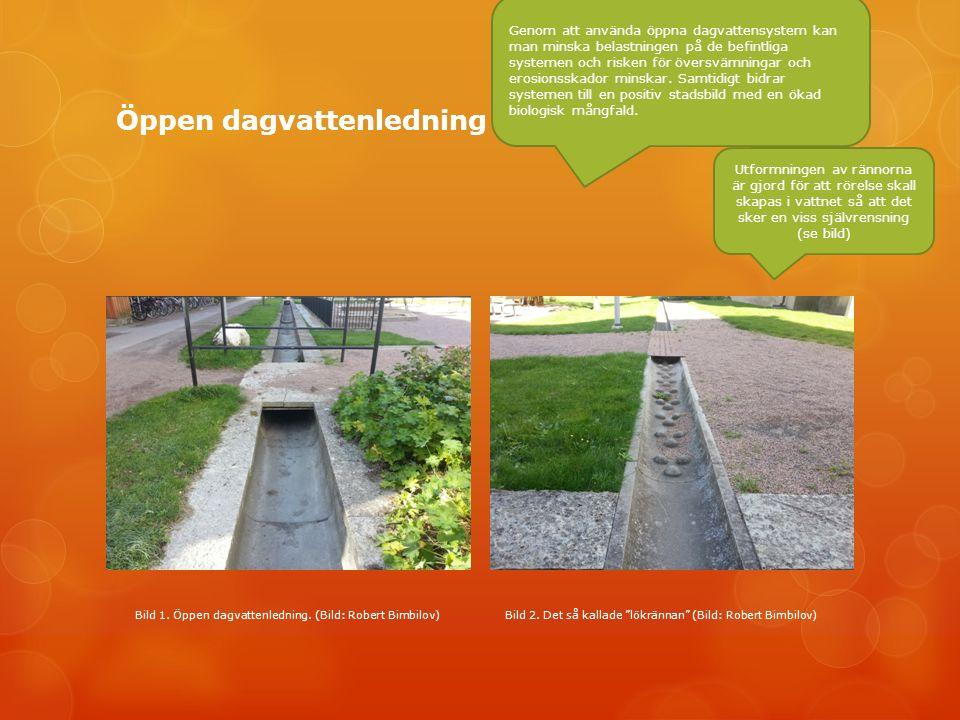 Öppen dagvattenledning Genom att använda öppna dagvattensystem kan man minska belastningen på de befintliga systemen och risken för översvämningar och erosionsskador minskar.