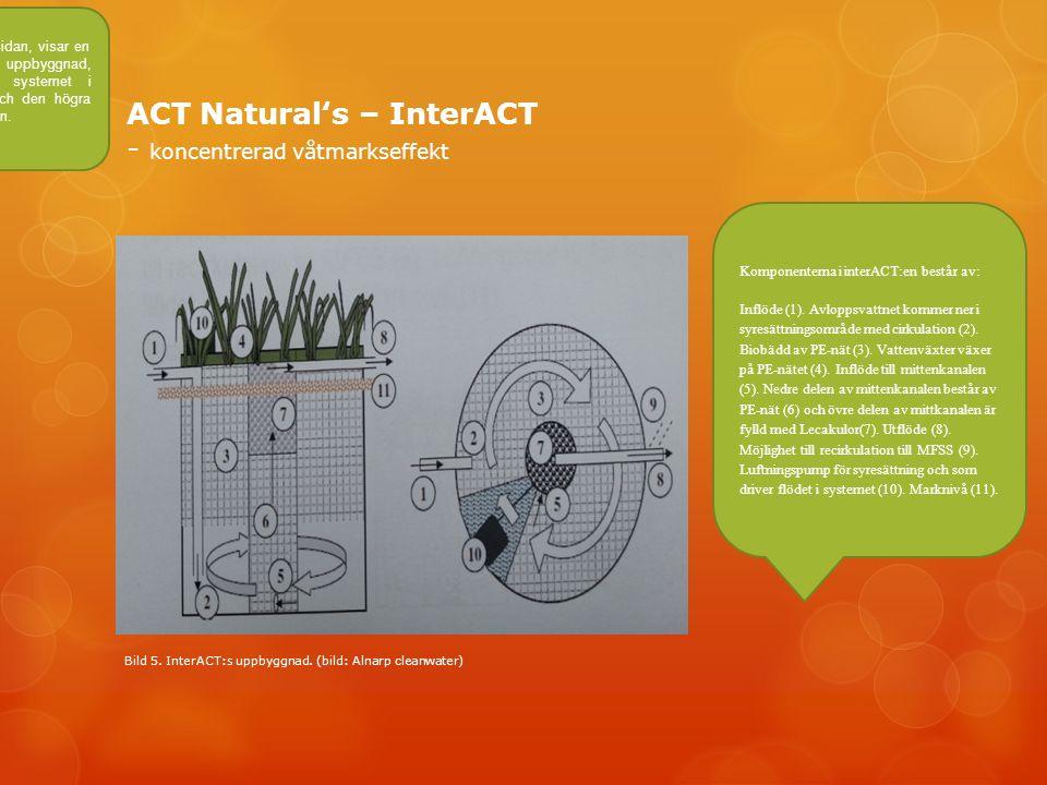 ACT Natural's – InterACT - koncentrerad våtmarkseffekt De två bilderna på vänstra sidan, visar en principskiss över InterACTs uppbyggnad, den vänstra bilden visar systemet i genomskärning från sidan och den högra bilden visar systemet ovanifrån.