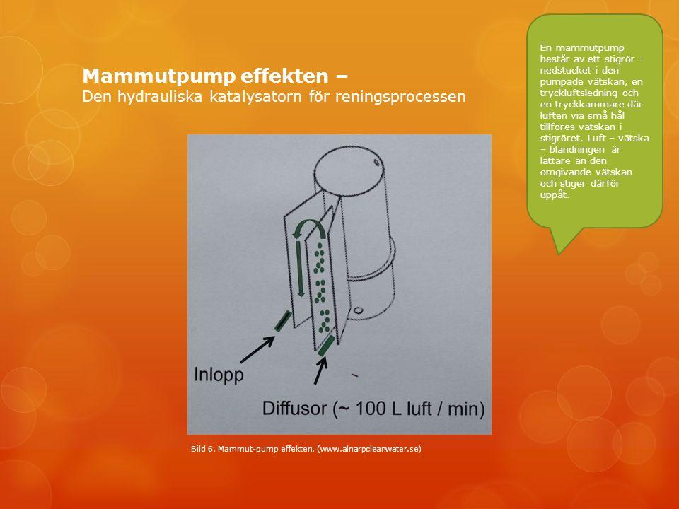 Mammutpump effekten – Den hydrauliska katalysatorn för reningsprocessen Bild 6.