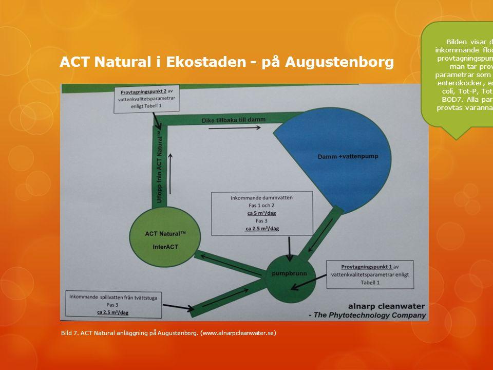 ACT Natural i Ekostaden - på Augustenborg Bild 7. ACT Natural anläggning på Augustenborg.